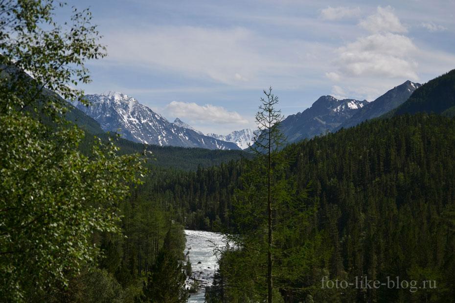 Река Кучерла и заснеженные вершины вдалеке