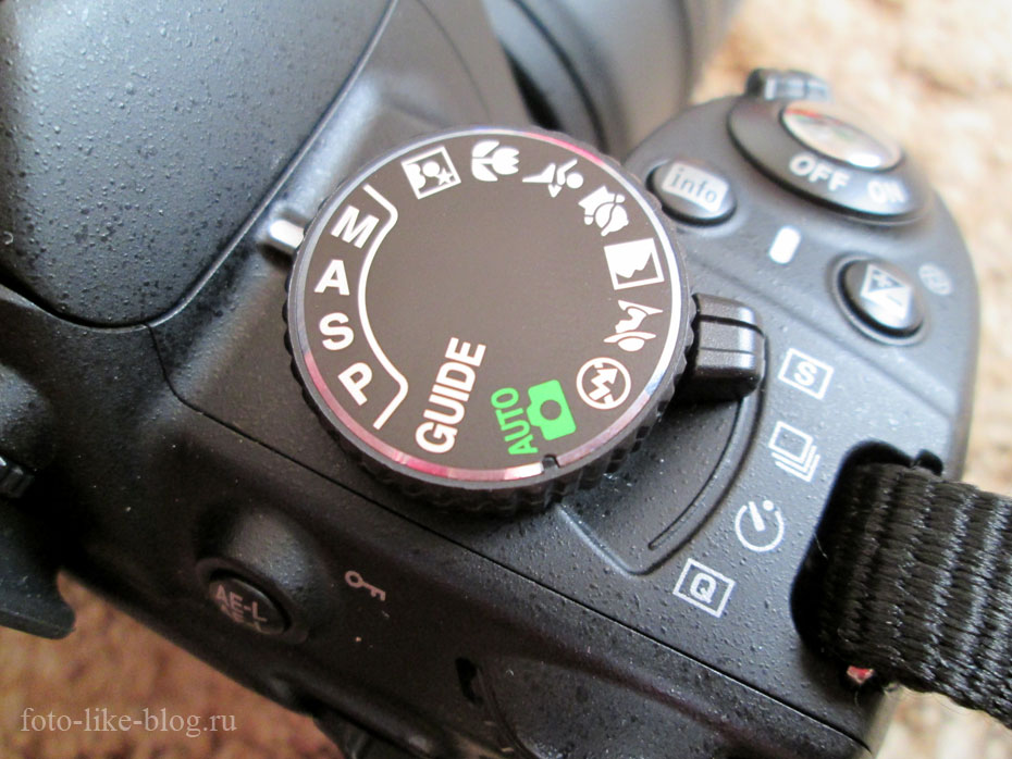 Как научиться фотографировать? Nikon d3100