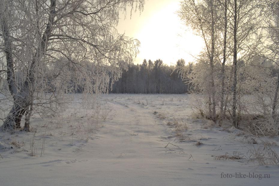 Зимний пейзаж в контровом свете - неудачный кадр - Nikon d3100