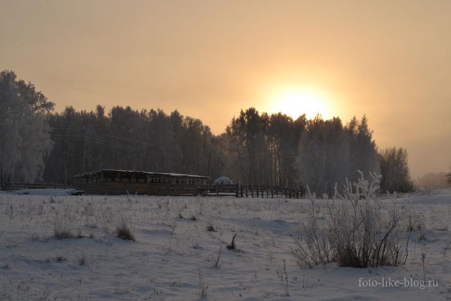 Зимний пейзаж в тумане - Nikon d3100