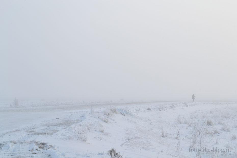 Мороз и туман, фото Nikon d3100